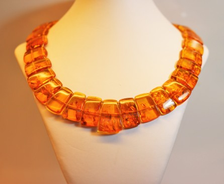 amber-collar-1img_2860